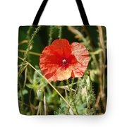 Lonesome Red Poppy Flower Tote Bag