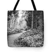 Long And Winding Path Tote Bag