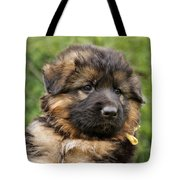 Long Coated Puppy Tote Bag