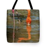 Long Colors II Tote Bag