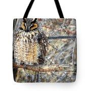Long Eared Owl Resting Tote Bag