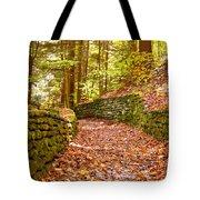 Long Fall Walk  Tote Bag
