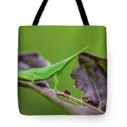 Long Grasshopper Tote Bag