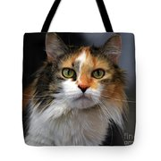 Long Haired Calico Cat Tote Bag