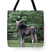 Long Legged Moose Tote Bag