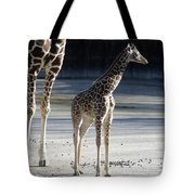 Long Legs - Giraffe Tote Bag