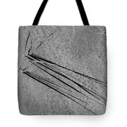 Long Shadows - 365-326 Tote Bag