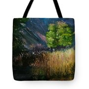 Long Shadows Tote Bag