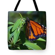 Long-since Retired Tote Bag