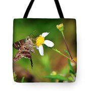 Long-tailed Skipper Butterfly Tote Bag
