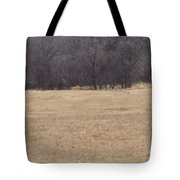 Long Trail Home Tote Bag