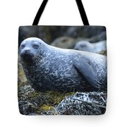 Long Whiskers On A Harbor Seal Tote Bag