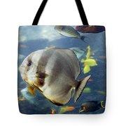 Longfin Batfish Tote Bag