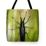 Longhorn Beetle Tote Bag