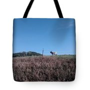 Longhorn In Kansas Tote Bag