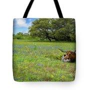 Longhorn Spring Tote Bag