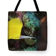 Longnose Butterflyfish Tote Bag by Steve Rosenberg - Printscapes