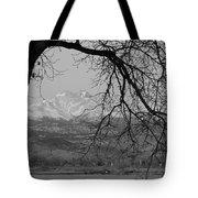 Longs Peak And Mt. Meeker The Twin Peaks Black And White Photo I Tote Bag by James BO  Insogna
