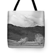 Longs Peak Snow Storm Bw Tote Bag