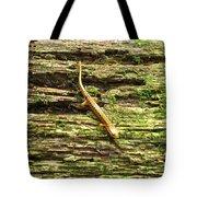 Longtailed Salamander Tote Bag