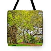 Longwood Plantation In Spring Glory Tote Bag