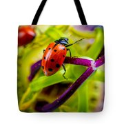 Look At The Colors Over There. Tote Bag