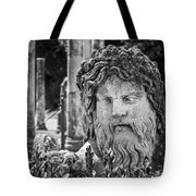 Look From The Past Tote Bag