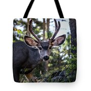 Look Into My Eyes Tote Bag