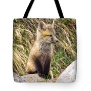 Look-out Tote Bag