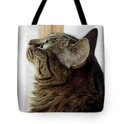 Look Out Window Tabby Cat Tote Bag