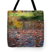 Look To Your Soul Tote Bag
