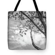 Look Up Into The Sky Tote Bag