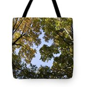 Look Up  Tote Bag