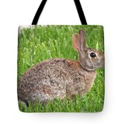 Look Who's Back Tote Bag