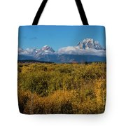 Looking Across Willow Flats To Mt Moran Tote Bag