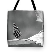 Looking Ahead Tote Bag by T A Davies
