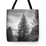 Looking For The Sky Into The Woods Tote Bag