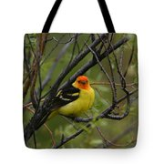 Looking At You - Western Tanager Tote Bag