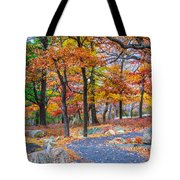 Looking Down A Trail On Bear Mountain New York Tote Bag