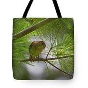 Looking Down - Common Sparrow - Passer Domesticus Tote Bag