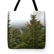 Looking Down From Mnt. Mitchell Tote Bag