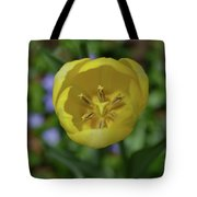 Looking Down Into The Inside Of A Yellow Tulip Tote Bag