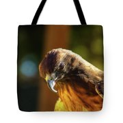 Looking Down On You Tote Bag