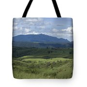 Looking East Tote Bag