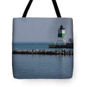 Looking Far Tote Bag
