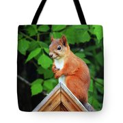 Looking Fo A Friend Tote Bag