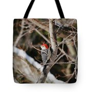 Looking For A Place To Peck Tote Bag