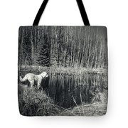 Looking For Beaver Tote Bag