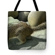 Looking For Crumbs Tote Bag