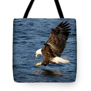 Looking For Fish Tote Bag